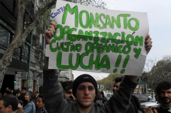 monsanto-vs-gde